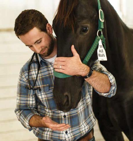 Homem com cavalo